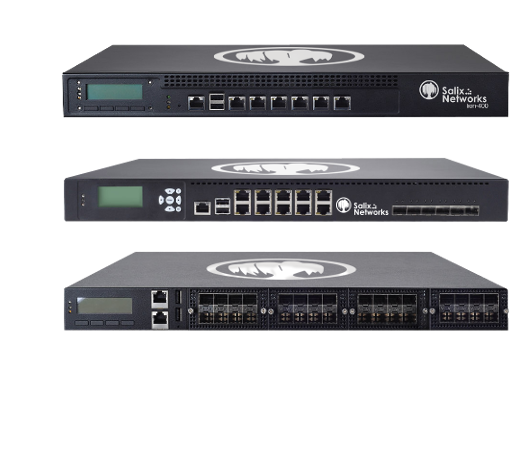 Firewall Lion3300-400